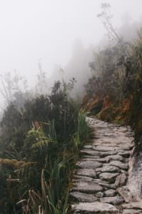 Path of success up a mountain in search of wellness
