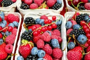 berries are healthy body fuel