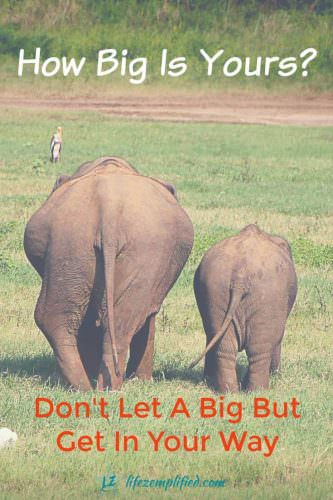 Don't Let A Big But Get In Your Way - Tackle Your Fears and Find Confidence