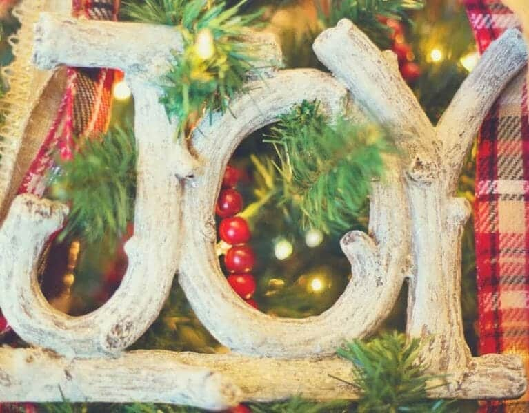 Taming Holiday Stress And Taking Care of YOU Joy